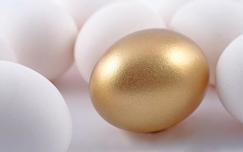 eggs480x300