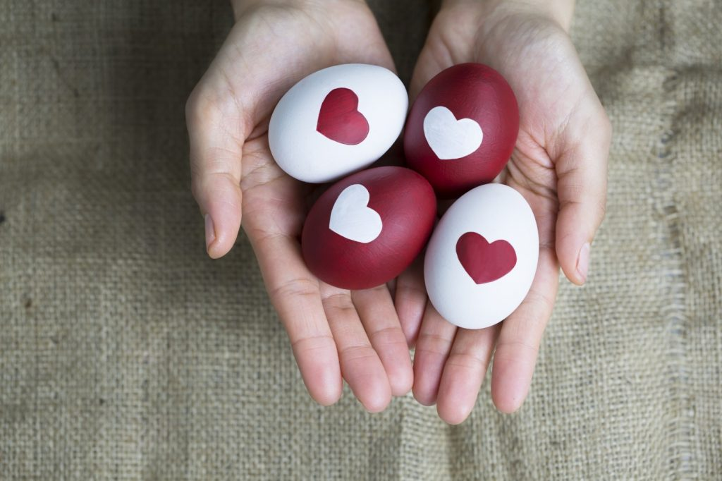 Become an Egg Donor