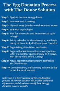 the egg donation process steps