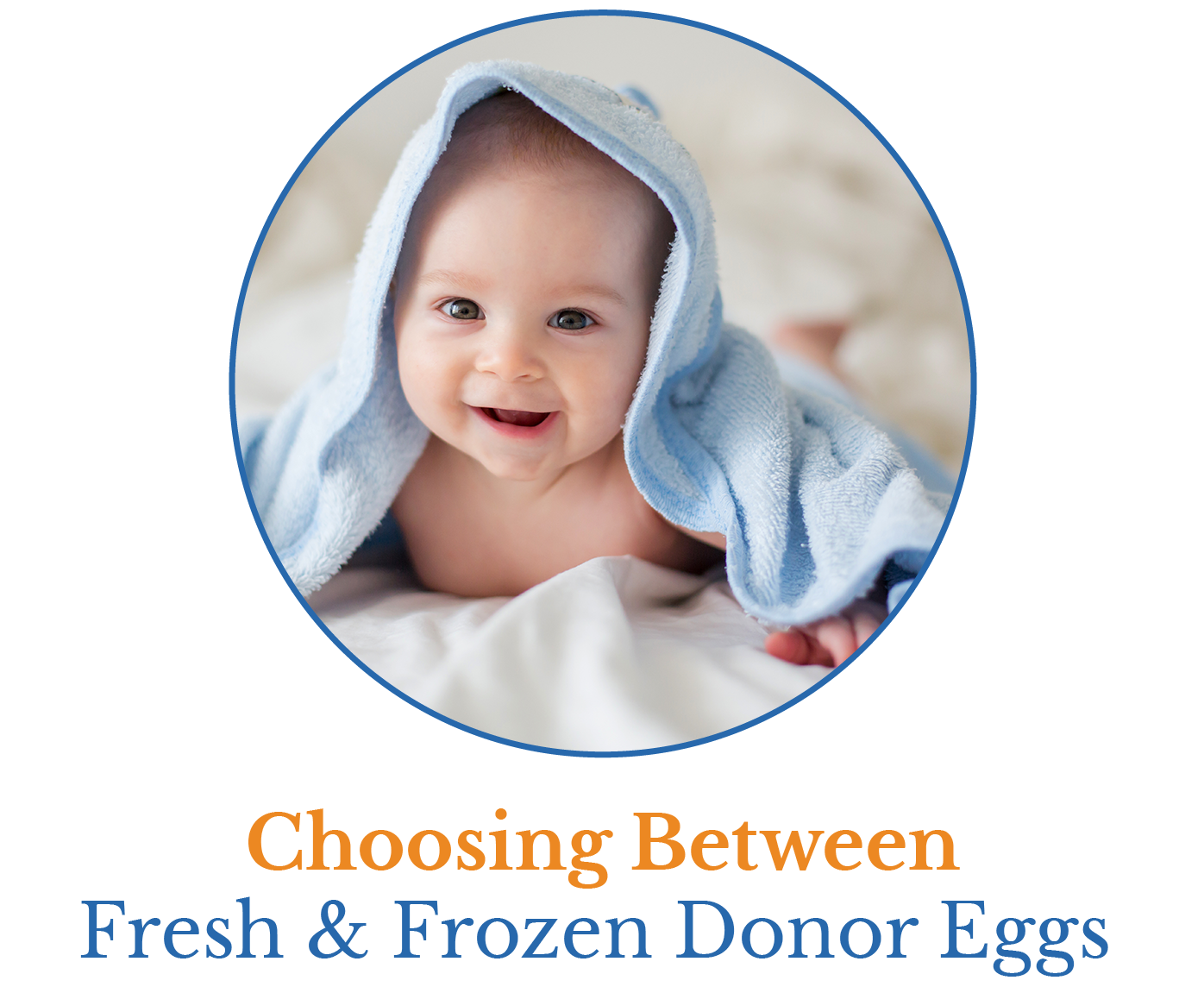 choose between fresh and frozen donor eggs cover