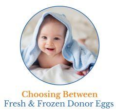 choosing between fresh and frozen donor eggs infographic